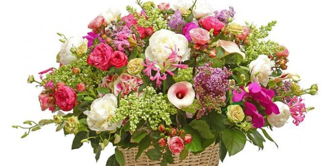 Красотата на цветята символизира висша хармония и съвършенство.