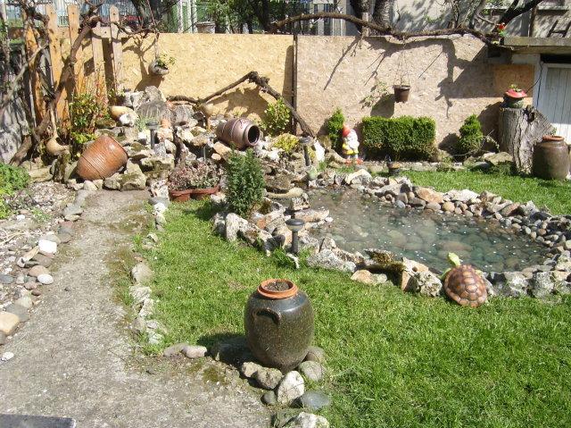 Красиво декоративно езерце с костенурка
