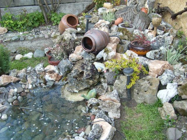 Грижа за декоративното езерце