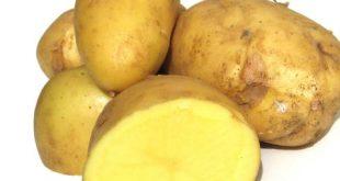 Картофите са храната, от която никога не бихме се отказали