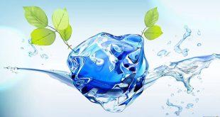 Спокойна и безобидна, водата всъщност е една велика стихия – извор на живот