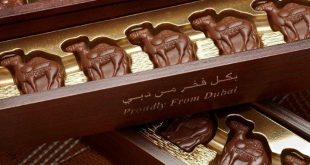 От камилско мляко се прави чудесен шоколад, а напоследък и сладолед