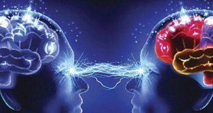 Човешкият мозък е единствения орган от нашето тяло, които все още е доста тъмно петно в науката