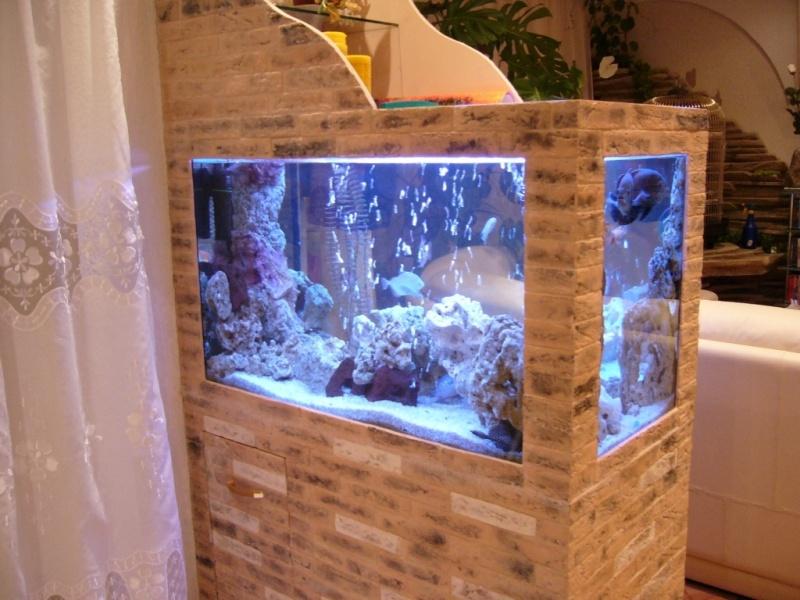 Красота в аквариума