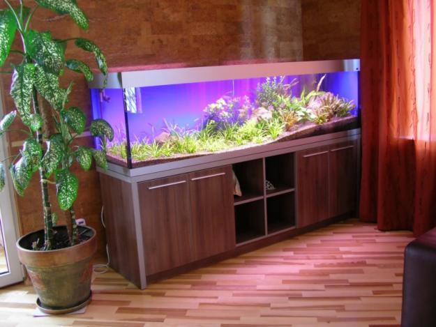 Осветен аквариум