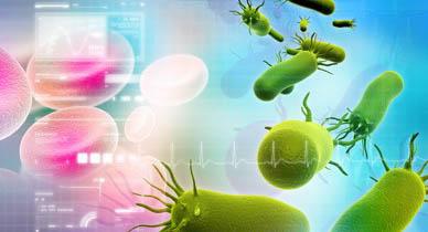 Човешката микрофлора